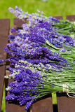 Some bunches Lavender Royalty Free Stock Images