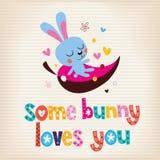 Some bunny loves you Stock Photos