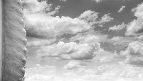 Some of the cactus with cloud and sky Royalty Free Stock Images
