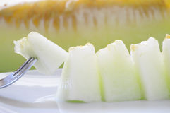 Some cantaloupe pierced with a fork. And served on a white plate Royalty Free Stock Image