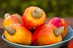 Some cashew fruit over a wooden surface. Fresh fruit Stock Photography