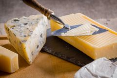 Some cheese and wine set. Mold blue cheese and cheddar on cutting board stock photos
