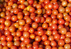 Some Cherry tomato at street market. Image of some Cherry tomato at street market Stock Photography