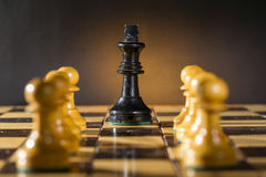 Some Chess Wooden Pieces. On Their Board Royalty Free Stock Photos