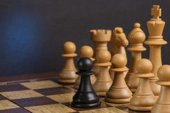 Some Chess Wooden Pieces Royalty Free Stock Photo