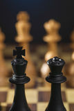Some Chess Wooden Pieces Stock Photography