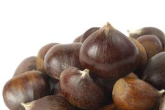 Some chestnuts Stock Photo