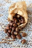 Some chestnuts. A sac of roast chestnuts Royalty Free Stock Photo