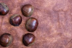 Some Chestnuts on Brown Cloth Background with Leaves and raw Sh. Ell of Thorns Royalty Free Stock Photography