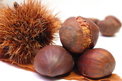 Some chestnuts. Some cooked roasted brown chestnuts Royalty Free Stock Photo