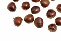 Some Chestnuts Isolated on White Background.  Royalty Free Stock Photography