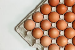 Some chicken eggs. In carton Stock Photography