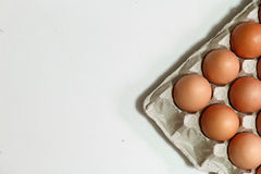 Some chicken eggs. In carton Royalty Free Stock Photo
