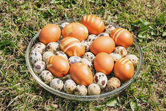 Some chicken and quail eggs for the Eeaster on the crystal dish Stock Photography