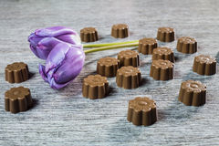 Some chocolates still life. With purple tulips Stock Images