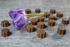 Some chocolates still life. With purple tulips Stock Photo