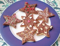 Christmas cookies with chocolate. Some christmas cookies with chocolate and sprinkles of sugar royalty free stock image