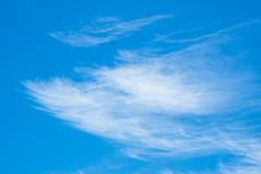 Some cirrus clouds with blue sky Royalty Free Stock Images