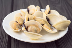 Some clams from the Pacific Ocean in faience dish on wooden boar Royalty Free Stock Photos