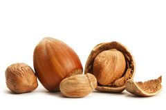 Some closed and cracked hazelnuts. On white background stock photo