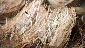 Coconut fibers texturebackground stock photography