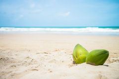 Some coconuts on tropical beach. Some coconuts on a tropical beach Royalty Free Stock Photography