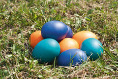 Some colored Easter eggs on the green lawn. Chicken eggs, colored in blue, emerald green, orange. Day light, sunny day, side shot Royalty Free Stock Photo