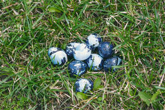 Some colored Easter eggs on the green lawn. Quail eggs colored like camouflage. Cloudy day, close up, top view royalty free stock photos