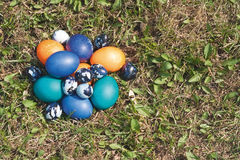 Some colored Easter eggs on the lawn. Chicken and quail eggs, painted for the celebration. Top view, objects on the right side of shot. Day light, sun is Royalty Free Stock Photography
