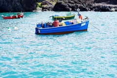 Some colored traditional fishing boats. Of Madeira on the green ocean stock photography