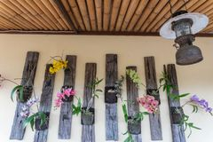Some colorful orchid flowers and types of wall decorations in a restaurant in Ubud, Bali royalty free stock photo