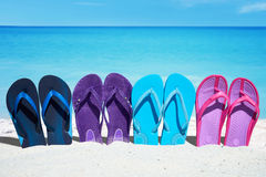 Some colorful  flip flops in a row. Some colorful flips flops in a row are on the sunny beach in the summer Stock Image