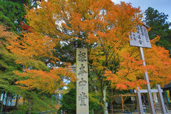 Some colorful leaves in Daihieihieizan. Kyoto Royalty Free Stock Photography