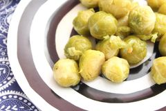 Brussels sprouts. Some cooked Brussels sprouts on a plate Royalty Free Stock Photo