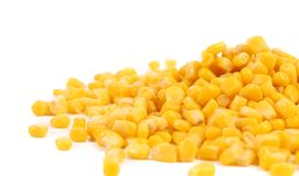 Some corn kernels. Isolated on a white background Stock Image
