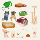 Some cute vector stuff for pets. Vector pet's items for pets store Stock Photo
