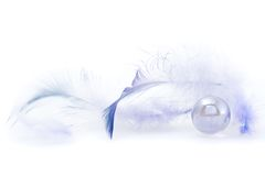 Some dark blue feathers. On a white background Royalty Free Stock Image
