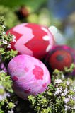 Some decorated easter eggs. Row of Easter Eggs with Daisy on Fresh Green Grass Stock Photos