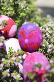 Some decorated easter eggs. Row of Easter Eggs with Daisy on Fresh Green Grass Royalty Free Stock Photo