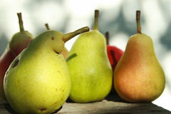 Some delicious pears. Some tasty pears on a wooden table stock photography