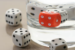 Some dices. In a glass of water and around it Royalty Free Stock Photography