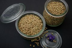 Dried brown lentils. Some dried brown lentils in a bowl stock photos