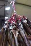 Some dried fish tied and ready to be sold in a market. royalty free stock photography