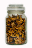 Some dried mushrooms. Royalty Free Stock Photo