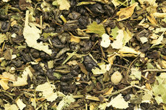 Some dried tea leaves. Stock Image