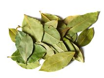 Some dry bay leaves. Macro bay leaves spice for cooking isolated on a white background Stock Photo