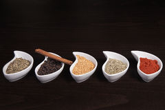 Some dry spices Stock Image