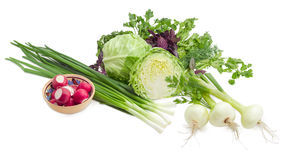 Some early spring vegetables and the greens. Young fresh white cabbage, stalks of the green onion, young bulb onions, bowl with red radish against the background Royalty Free Stock Image