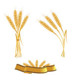 Some ears of wheat and a ribbon. Royalty Free Stock Photos