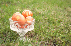 Some Easter eggs in crystal vase on a green lawn Stock Photography